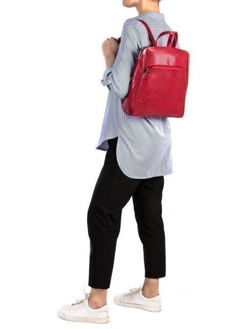 Красный рюкзак S.Lavia (Славия) - артикул: 839 923 04 - ракурс 1
